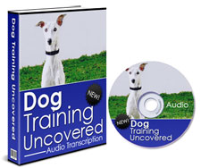 dogtaininguncovered-plr1.jpg